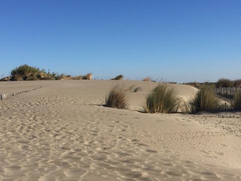 la grande motte plage