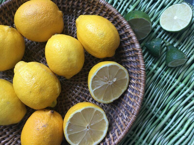 citron-acide-ou-alcalin
